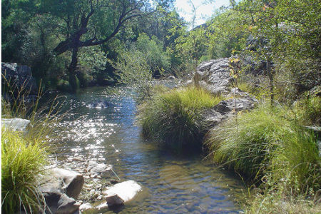 El Parque Nacional Los Cabañeros