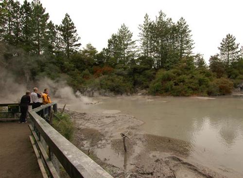 pozos-de-lodo en Rotorua