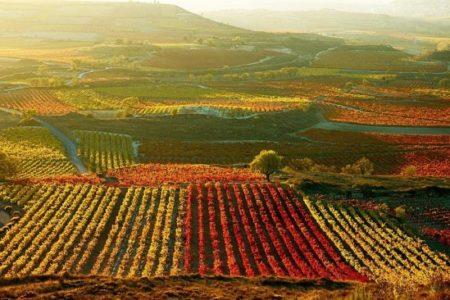 Turismo de primavera en La Rioja