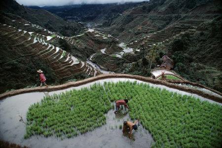 Las terrazas de arroz de Banaue, en Filipinas