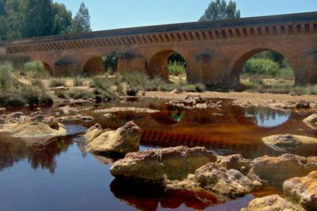 De El Rocío a Niebla, ruta del vino en Huelva