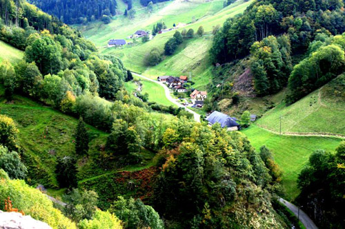Recorriendo La Selva Negra En Alemania