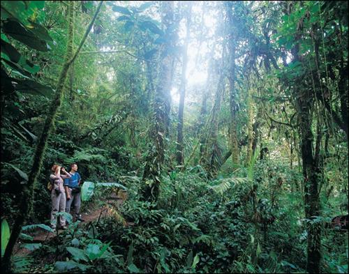 costa-rica-ecoturismo-2