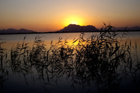 Escapada a la Costa Blanca: Algorfa