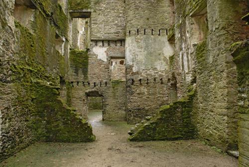 ruinas-del-castillo-berry-pomeroy