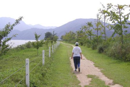 Jung-do, escapada desde Seúl