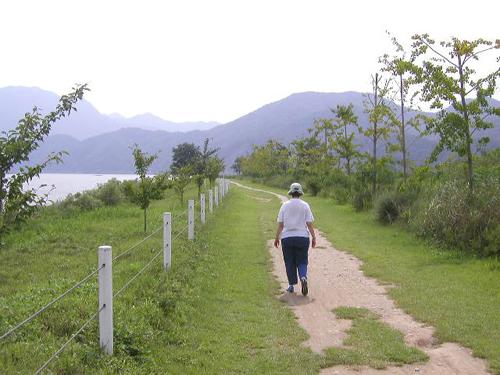 isla-jung-do