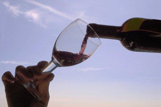 Fiesta Internacional del Vino