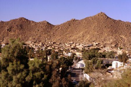 Argelia mágica, camellada por el Sahara