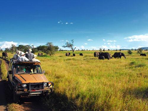 safaris-en-africa