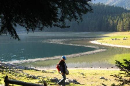 Biogradska Gora, el parque nacional más pequeño y hermoso de Montenegro