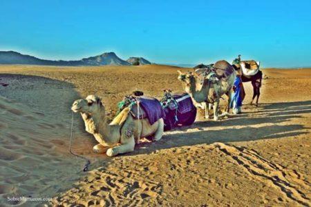Diario de viaje por Marruecos
