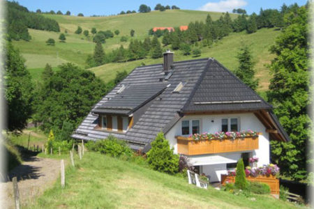 Casas rurales en la Selva Negra